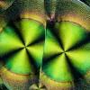 Ascorbinsäure_in_polarisiertem_Licht_4